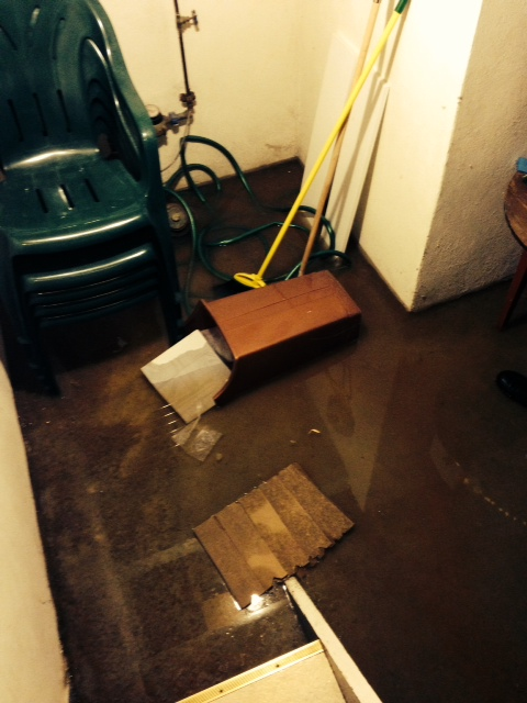 Mary's Flooded Basement